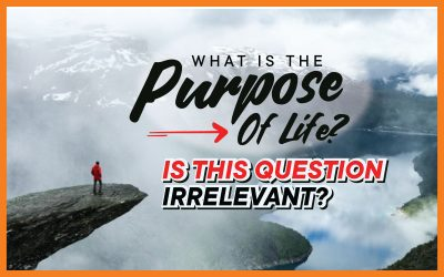 What Is The Purpose Of Life? Is This Question Irrelevant?